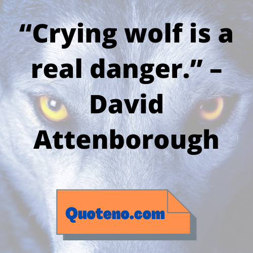 wolf quotes for Instagram